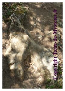 Forêt de Nébias, roche formant un visage étrange d'ET