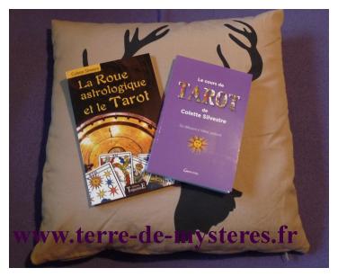 Des livres pour apprendre à lire les lames du Tarot