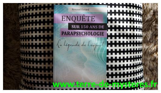 Pour cheminer aux côtés de chercheurs historiques en paranormal : Enquête sur 150 ans de parapsychologie, Renaud Evrard