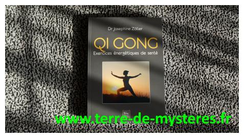 Qi Gong, exercices énergétiques de santé, un livre de référence