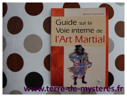 Voie interne de l'art martial : le guide