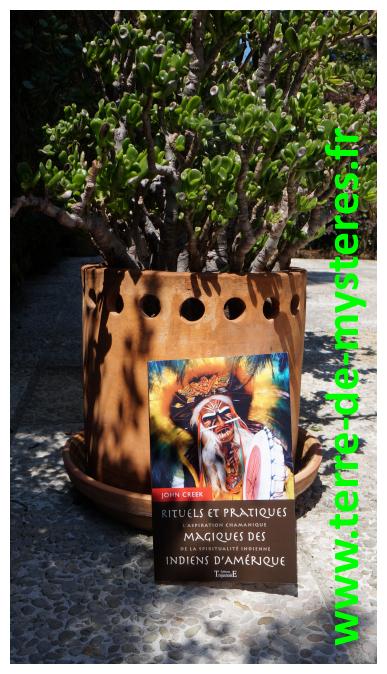 Rituels et pratiques magiques des Indiens d'Amérique : l'aspiration chamanique de la spiritualité indienne